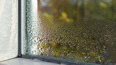 3 เคล็ดลับง่ายๆช่วย ลดความชื้นในบ้าน ให้หมดไป