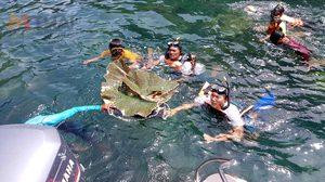 สั่งล่าแก๊งลัก ปะการังจาน อายุพันปี สูญหายจากเกาะเวียง