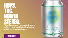มาแล้วจ้า!! เบียร์กัญชา แอลกอฮอล์ 0% แต่เคลิ้มแน่นอน