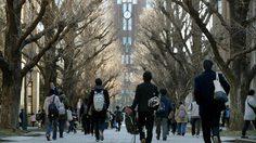 มหาวิทยาลัยญี่ปุ่น