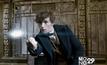 Fantastic Beasts เปิดตัวแรงทั่วโลกผ่านหลัก 200ล้านเหรียญ