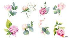12 ดอกไม้ประจำราศี บ่งบอกตัวตนความเป็นคุณ