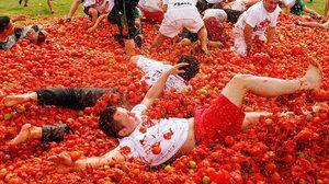 เทศกาลปามะเขือเทศ (La Tomatina) สงครามอาหารสุดดุเดือด