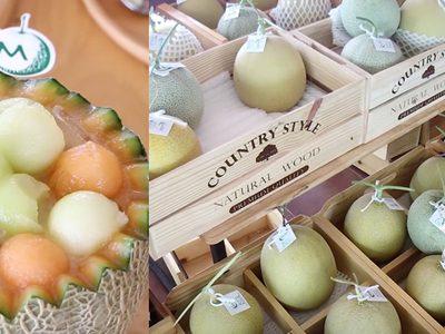 ร้าน M Melon Farm คลองสาม เมนูเมล่อน สดใหม่จากฟาร์ม