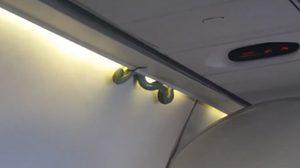 มายังไง!! งูยักษ์โผล่เลื้อยสยองบนเครื่องบิน ทำผู้โดยสารช็อกทั้งลำ