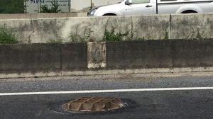 แก้ไขแล้ว ฝาท่อบนถนนย่านบางบ่อพลิก เป็นเหตุทำรถยางแตกนับสิบคัน