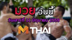 โปรแกรมมวยไทยวันนี้ วันเสาร์ที่ 11 มิถุนายน 2559