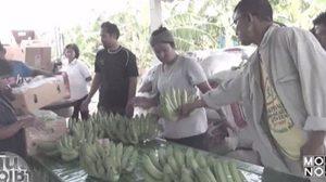 ออเดอร์ทะลัก! กล้วยหอมทองขายดี ญี่ปุ่นสั่งซื้อสัปดาห์ละ 5 ตัน