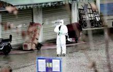 จีนยืนยันยอดผู้เสียชีวิตจากไวรัสโคโรนาเพิ่มเป็น 56 ราย