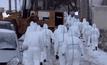 พบเชื้อไข้หวัดนกระบาดในญี่ปุ่น
