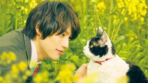 มาวิ่งด้วยกันนะ!! มงคลซีเนม่า ชวนคนรักแมว มาวิ่งในกิจกรรม RUN FOR CATS