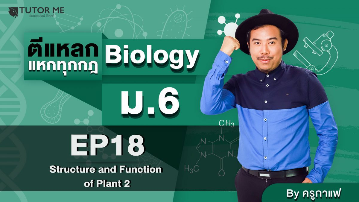 EP 18 Structure and Function of Plant 2