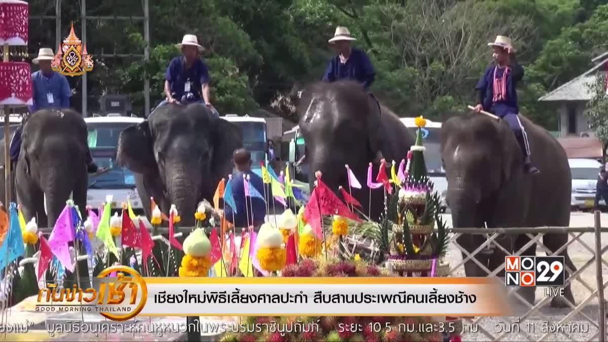 เชียงใหม่พิธีเลี้ยงศาลปะกำ สืบสานประเพณีคนเลี้ยงช้าง