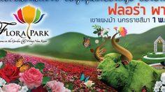 อลังการทุ่งดอกไม้ ฟลอร่า พาร์ค วังน้ำเขียว 2558
