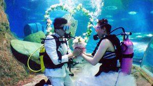 ฮือฮา! คู่รักแต่งงานในอุโมงค์น้ำรับ 'วันวาเลนไทน์'