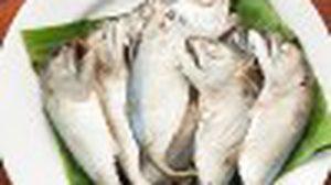 ว่ากันด้วยเรื่องของ ปลาทู แสนอร่อย