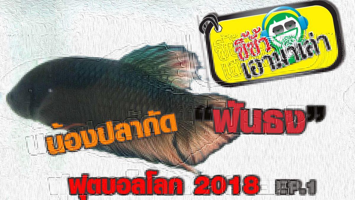 ซี้ซั้วเอามาเล่า น้องปลากัดฟันธง บอลโลก 2018 EP.1