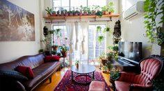 แต่งห้องอพาร์ทเม้นท์ แบบจัดเต็มด้วยต้นไม้กว่า 300 ต้น!