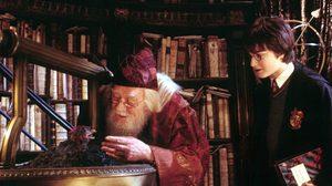 แผนผังตระกูลดัมเบิลดอร์ (Dumbledore Family)