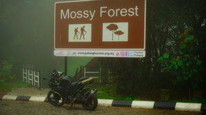 ป่ามอสส์ ประเทศมาเลเซีย