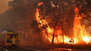 ไฟป่าออสเตรเลีย เหตุจากคน ล่าสุดรวบคนวางได้นับร้อยราย