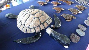 เต่าตนุ จาก กะลามะพร้าว สุดยอดไอเดียสร้างเงิน